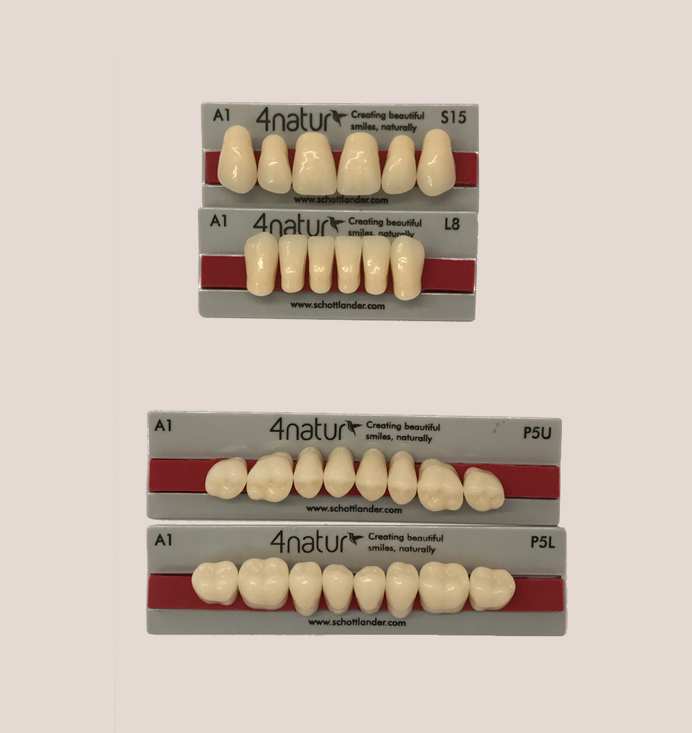 two sets of artificial teeth laid plat on card for selection part of the denture process